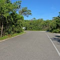 Access roads are wide to accommodate RVs.- Henderson Beach State Park Campground