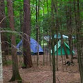 Tents seen through the trees. There is a lot of room between sites.- Heart Lake Campground