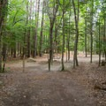 Campsite 1 is a large site with ample parking.- Heart Lake Campground