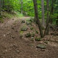 A number of switchbacks lessens the grade of the trail.- Shelving Rock Mountain