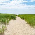 Sandy path on Race Point Beach.- Race Point Beach
