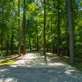 Typical campsite at Whitten Park Campground.- Whitten Park Campground