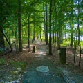 Trail to Loop 1 and large fishing dock.- Whitten Park Campground