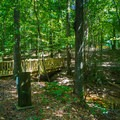 Bridge on trail near Loop 1.- Whitten Park Campground
