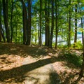 Trail from campsite 11 to large fishing dock.- Whitten Park Campground