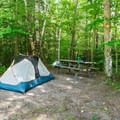 Typical campsite.- AMC's Cardigan Campsites