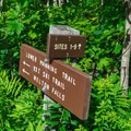 Several trails leave from Cardigan Lodge Reservation.- AMC's Cardigan Campsites