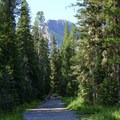 The trail leading up to Grotto Falls is wide and wheelchair accessible.- Hyalite Lake