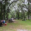 The picnic area is often full of scuba divers preparing for their dives.- Troy Spring State Park