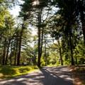 Paved roads through Goodwill Park.- Goodwill Park