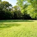 An open field in Goodwill Park.- Goodwill Park