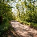 Dirt trails in Goodwill Park.- Goodwill Park