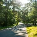 Paved trails at Goodwill Park.- Goodwill Park