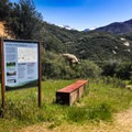 After a windy, cliffside dirt road, there is ample parking and bear boxes before you begin your journey.- Middle Fork Trail to Redwood Meadow