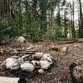 Campfires are permitted at Redwood Meadow, and there is ample space for groups to spread out.- Middle Fork Trail to Redwood Meadow