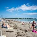 Beachgoers enjoying the summer weather at Devereux Beach.- Devereux Beach