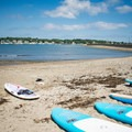 Some paddleboards for rent across from Devereux Beach.- Devereux Beach