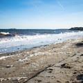 Sea foam on Devereux Beach.- Devereux Beach