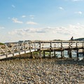 The extensive pebble expanse and a dock at Cape Hedge Beach.- Cape Hedge Beach