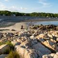 The extensive pebble expanse at Cape Hedge Beach.- Cape Hedge Beach