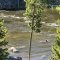 A chilly dip. Despite its name, the Firehole River is not warm!- Firehole Canyon