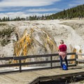 Thermal streams flowing into the Firehole River.- Upper Geyser Basin Trail
