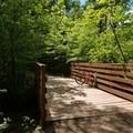 A creek crossing in Luton Park.- Luton Park