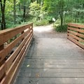 The well-made, wide bridges in Luton Park.- Luton Park