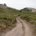 The Coast Trail above the lower campsites.- Coast Camp