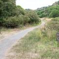 The beginning of the Laguna Trail.- Laguna Trail