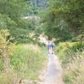 The Laguna Trail in Point Reyes National Seashore.- Laguna Trail