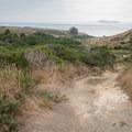 Views along the Laguna Trail in Point Reyes National Seashore.- Laguna Trail