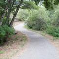 The trail connecting the Laguna Trail to Coast Camp, Point Reyes National Seashore.- Laguna Trail