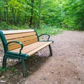 There are two benches along the trail.- The Pinnacle