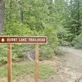 Follow this road to the trailhead.- Paradise Park Loop