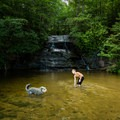 A boy and dog play in the shallow swimming hole.- Wildcat Wayside