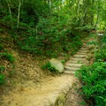 Steps lead up to the Middle Falls.- Wildcat Wayside