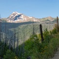 This trail wastes no time in gaining great views.- Loop Trail