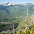 In 2003 a wildfire charred the forest surrounding the lower 2 miles of trail.- Loop Trail