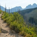 The burned forest makes distant peaks easy to see.- Loop Trail
