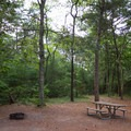 A campsite with access to a trail.- Kiptopeke State Park Campground