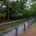 A trail leading to the beach from the campground.- Kiptopeke State Park Campground
