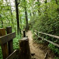 The trail leading to the second overlook.- Caesar's Head State Park