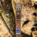 Signs at the major intersections denote different trails.- Graveyard Fields