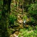 A hiker crosses Cove Creek.- Little Bradley Falls