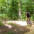 Forest Exploration Trail.- Pocahontas State Park Campground