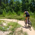 Pocahontas State Park has some of the best mountain biking trails in the area.- Pocahontas State Park
