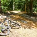 Gateway 1 mountain bike loop.- Pocahontas State Park