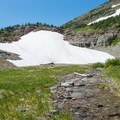 A permanent snowfield and meltwater stream near the pass.- Swiftcurrent Pass Trail