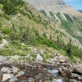 A small creek crossing below the waterfalls.- Swiftcurrent Pass Trail